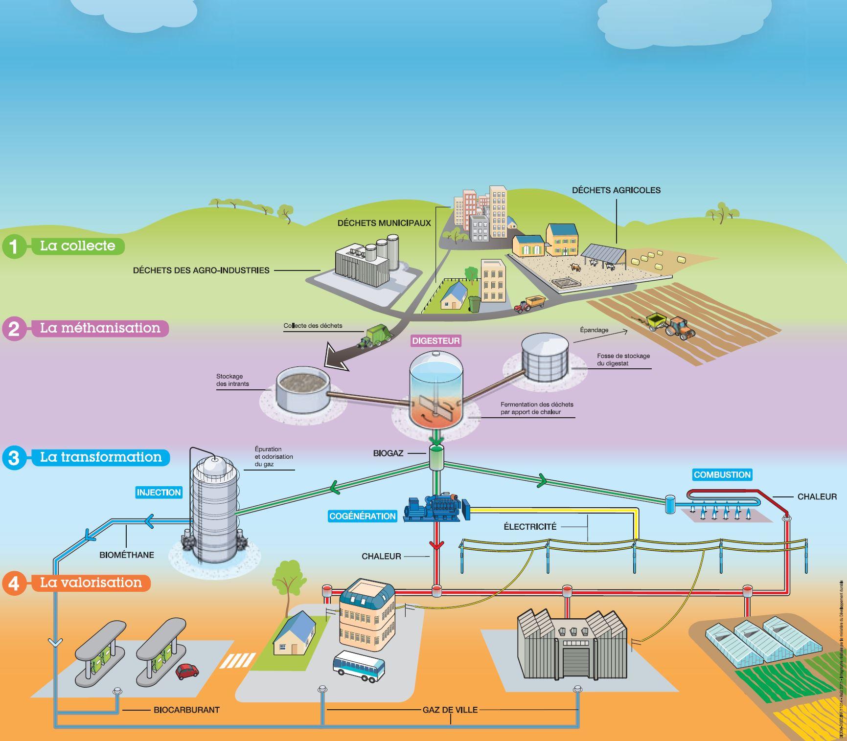 Énergie verte : les résidus de la méthanisation en discussion
