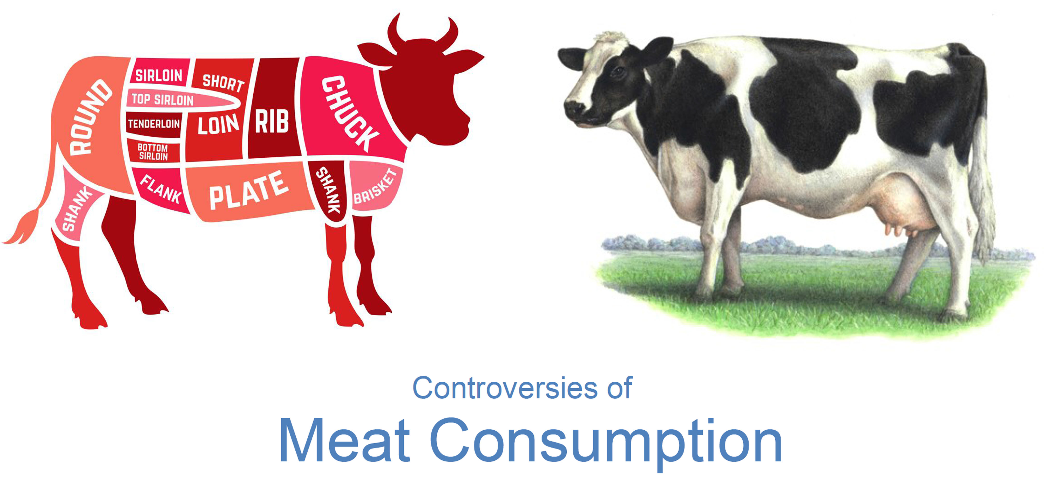 Exemple dossier controverse : Meat consumption